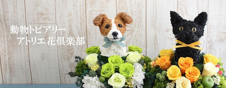 犬猫動物トピアリーフラワーギフトのアトリエ花倶楽部
