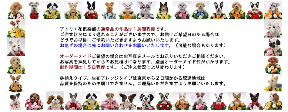 犬猫動物トピアリーアトリエ花倶楽部ご利用について