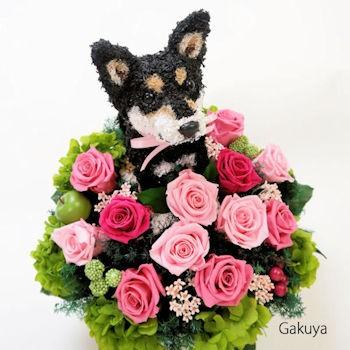 犬好き 猫好きの人へ 楽屋花