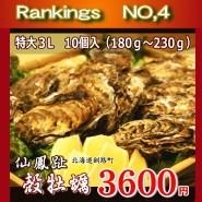 牡蠣3L 10個