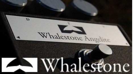 Whalestoneコーナー