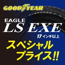 ls_exe