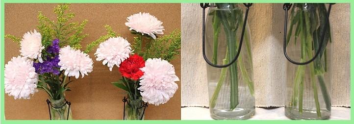 切り花の水実験1