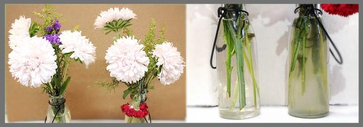 切り花の水実験3