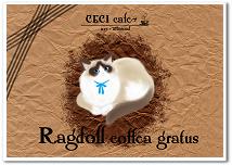 ラグドールコフェーアグラートゥス