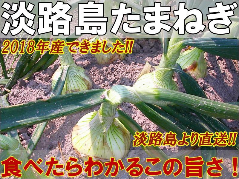 淡路島たまねぎ 淡路島より直送!