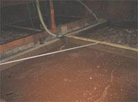 センザン醤油の紹介画像4