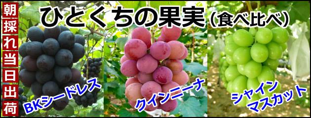 ひとくちの果実(予約)