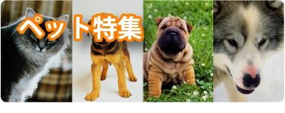 ペット用品 犬 猫 オリジナルグッズ