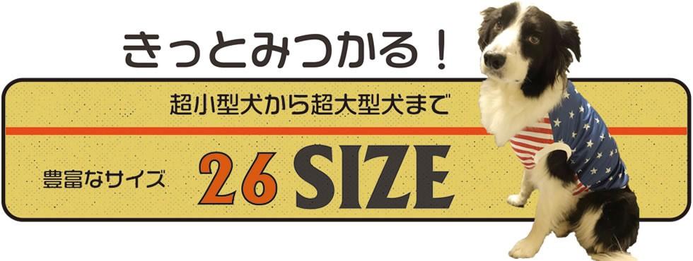 26サイズ