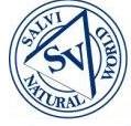 SALVI サルヴィ
