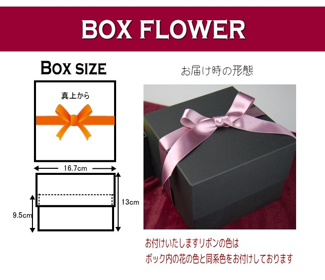 boxflower