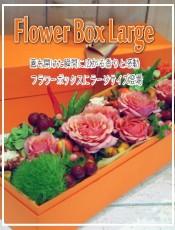 フラワーボックスL FlowerboxL