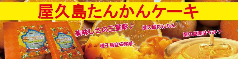 屋久島たんかんケーキ