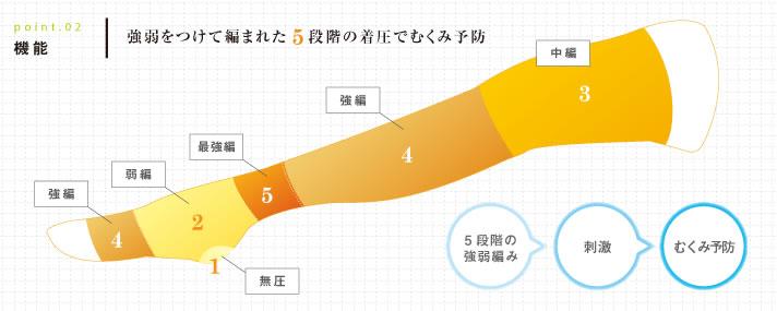 ギロファコンプレッソ フィクササポーターは、無圧・弱編・中編・強編・最強編の5段階編が、滞りがちな静脈・リンパ液の流れを刺激してむくみを予防します。
