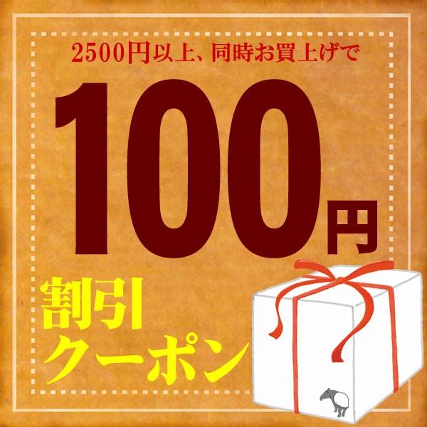 【100円OFF】クーポン