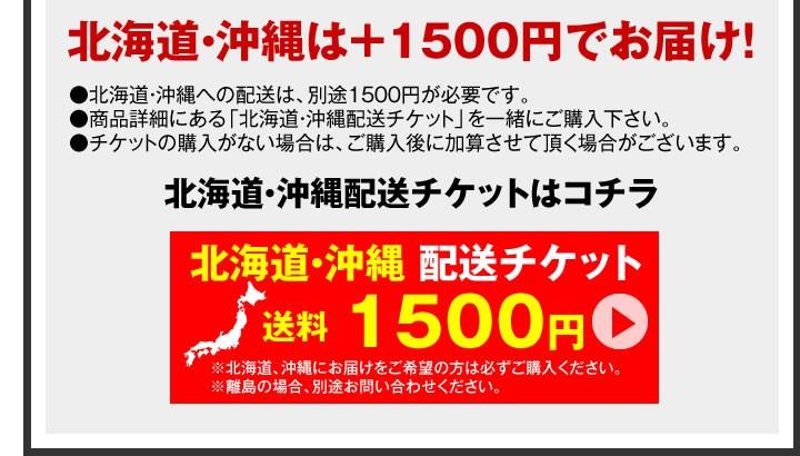北海道・沖縄500円チケット