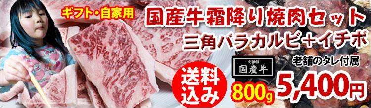 国産牛霜降り焼肉セット