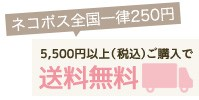 5,500円(税込)以上ご購入で送料無料