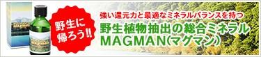 野生植物抽出総合ミネラル:マグマン