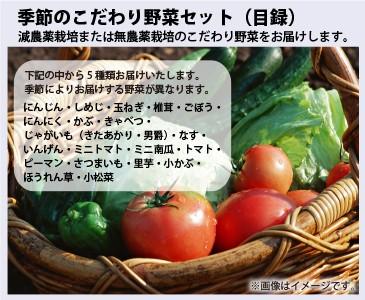 季節のこだわり野菜セット
