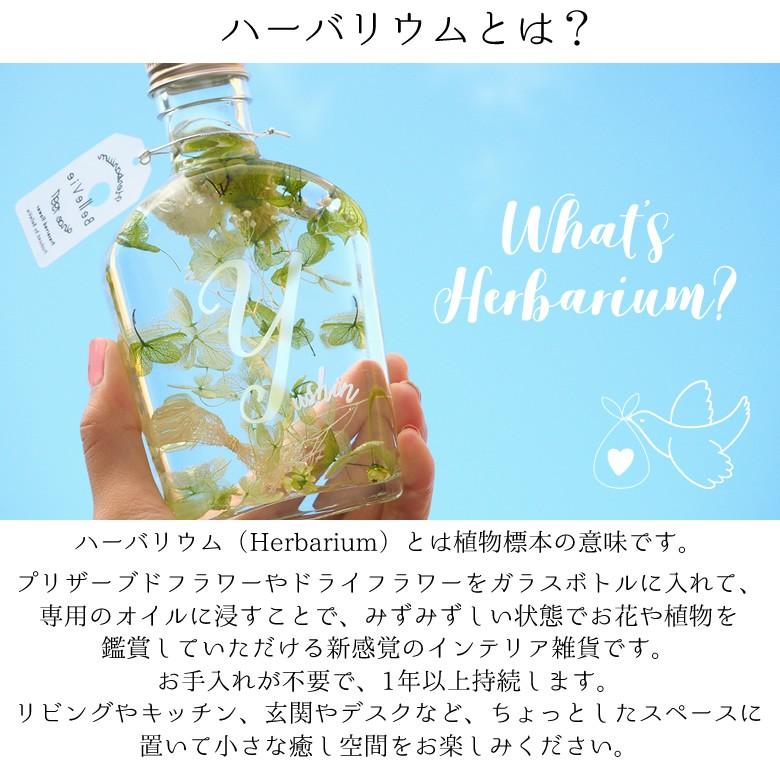 ハーバリウム ベビーボトル ハーバリウムとは