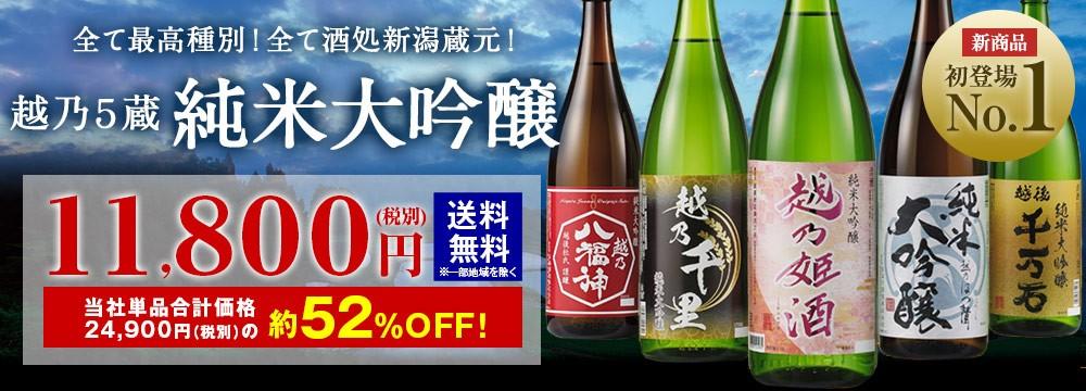 越乃五蔵純米大吟醸一升瓶5本組