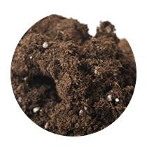 肥料入り鉢上げ用土(鉢/受け皿セット)