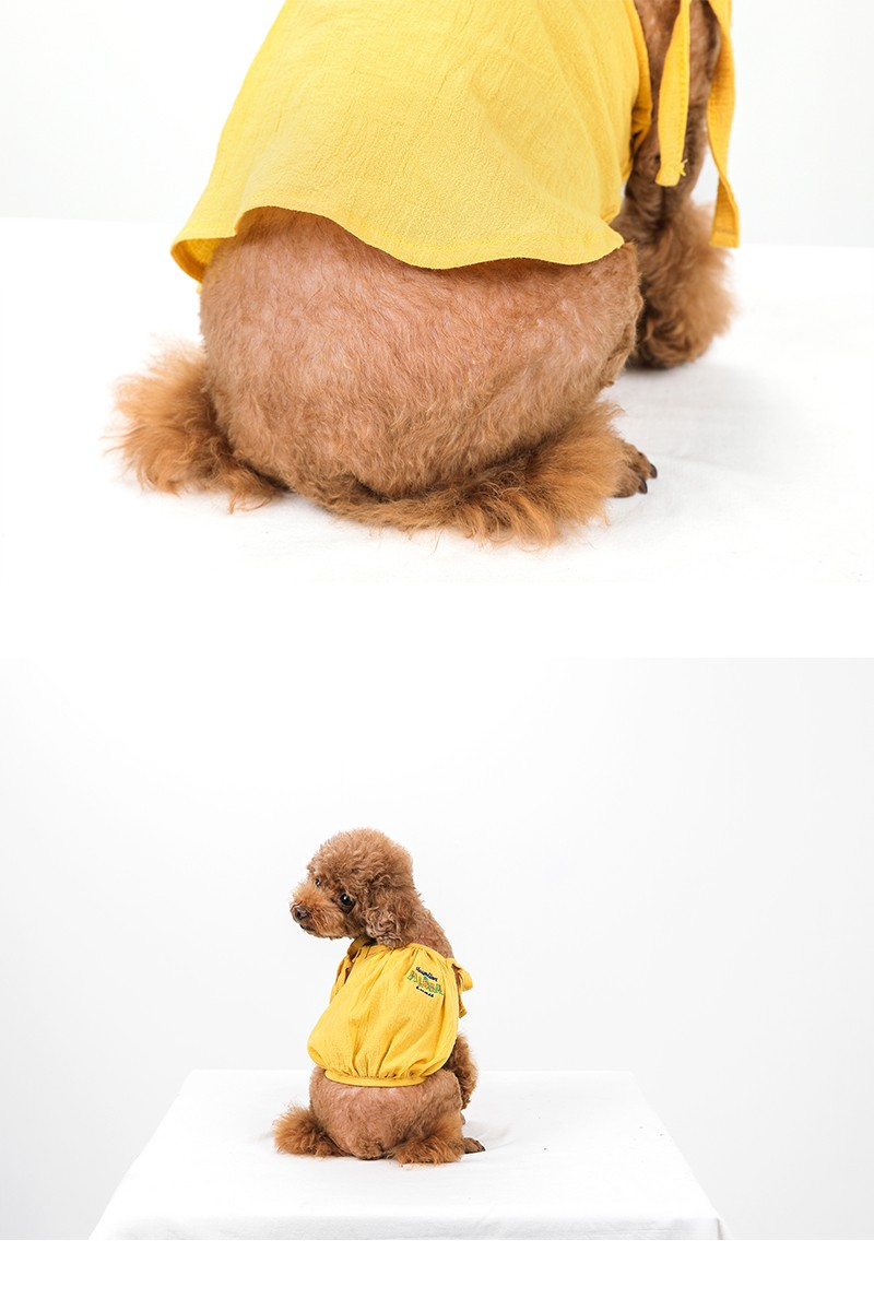 べストフレンズ BestFriends/犬服/犬の服/ドッグウェア/シャツ/シアサッカー/おしゃれ/かわいい/ボーダー/ストライプ/小型犬/アロハシャツ/夏/クール