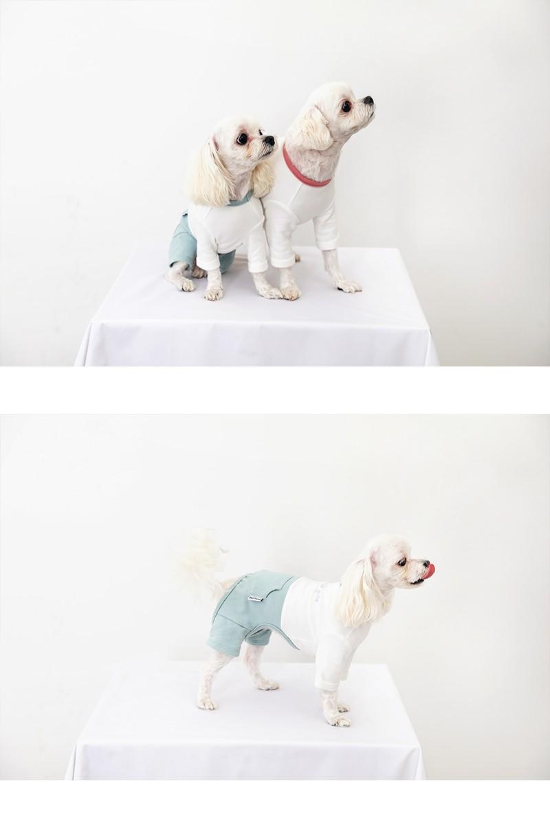 べストフレンズ. BestFriends. 犬服. 犬の服. ドッグウェア. Tシャツ. ニット. 暖かい. 秋. 冬. 春. 長袖. 可愛い
