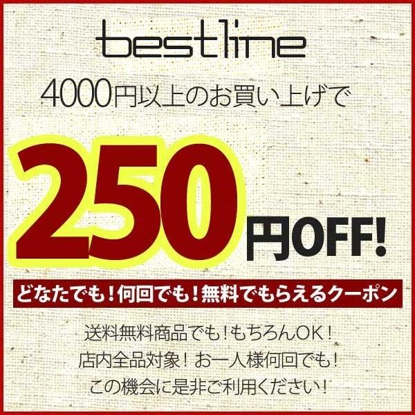 【店内全品対象】250円OFFクーポン★何回でも利用可能♪