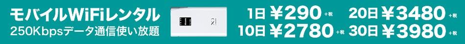 日本国内用 モバイルWiFiレンタル(LTE回線)