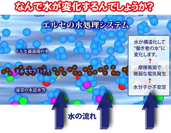 超高機能 水道水 シャワー