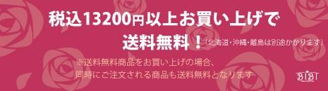 税込13200円以上で送料無料