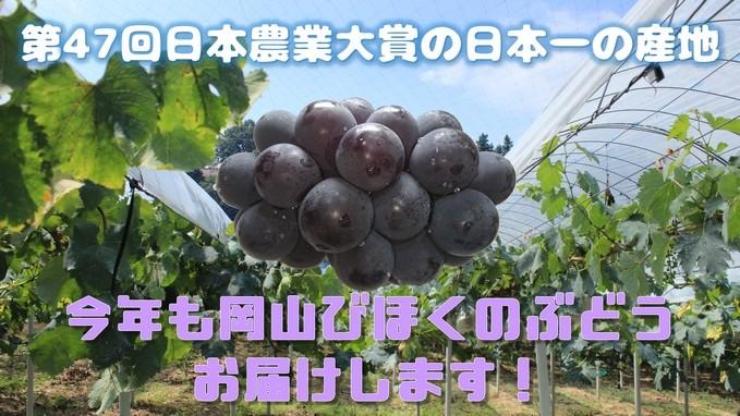 日本ミツバチの蜂蜜 まもなく2020年春採蜜