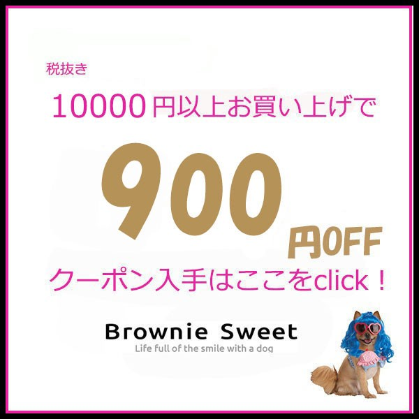 ★ 10000円以上お買上げで900円OFFクーポン!