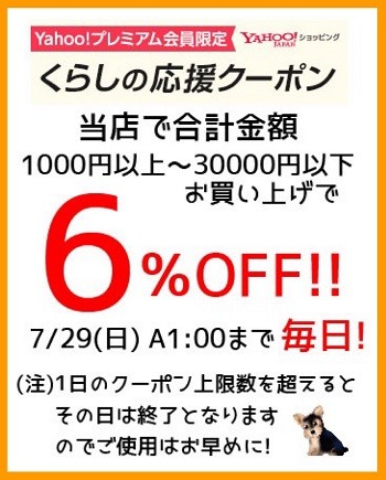 ★ 5000円以上お買上げで500円OFFクーポン!