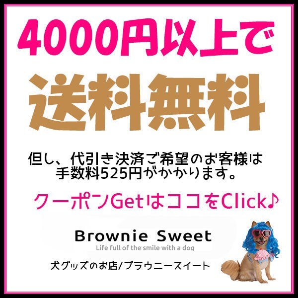★ 合計金額4000円以上お買い上げで送料無料!
