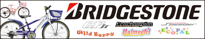 BRIDGE STORN