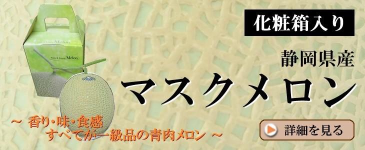 【化粧箱入】静岡県産マスクメロン