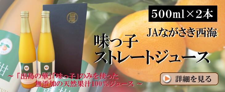 【500ml×2本】味っ子ストレートジュース