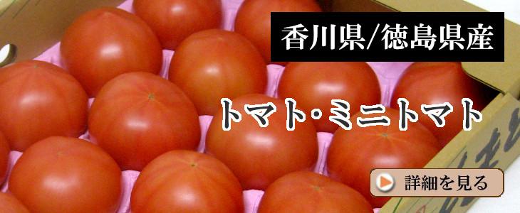 【約4kg入】トマト