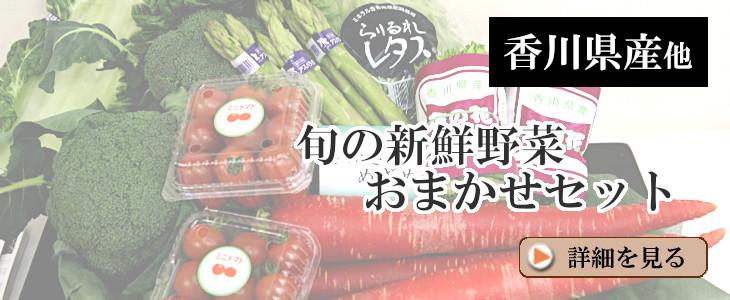 旬の新鮮野菜おまかせセット