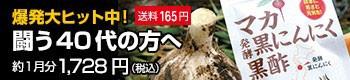 爆発大ヒット中!闘う40代の方へ。マカ発酵黒にんにく黒酢約1ヶ月分1,728円(税込)送料165円