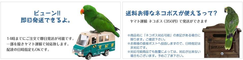 バードモアヤフーストア店は、14時までにご注文を頂ければ即日発送が可能です。発送は、一部を除きヤマト運輸で対応致します。また、配達の日時指定も承っております。商品名に「ネコポス対応可能」と記入がある商品は、ヤマト運輸 ネコポス(350円)の対応が可能です。