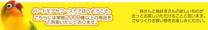 バードモアヤフーストア店は商品豊富!!