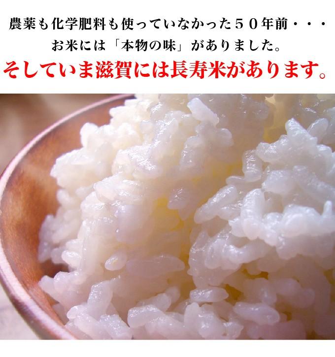 お米の「本物の味」