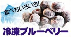 食べ方いろいろ!冷凍ブルーベリー