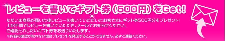 レビューを書いてギフト券(500円)をGET!