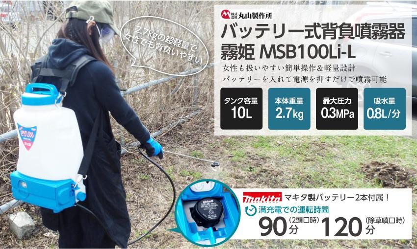 MSB100LI